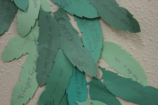 The hopes and dreams of the Lakota students at St. Joseph Indian School.